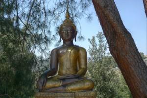 m.buddha_rupa_antique1 wat metta